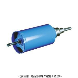 BOSCH(ボッシュ) ボッシュ ガルバウッドコアカッター210mm PGW-210C 1個 753...