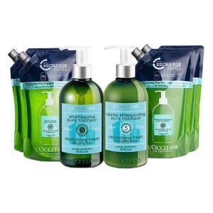 地肌をクールに洗い上げる爽やかケアのピュアフレッシュネスシリーズより、汗や皮脂を毛穴まですっきり洗い...