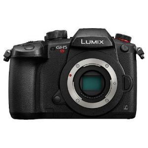 1新開発デュアルネイティブISOテクノロジー搭載イメージセンサーでLUMIX史上最高の高感度画質を実...