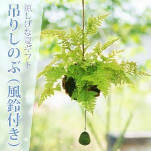 納涼:吊りしのぶ(風鈴付)*風流 プレゼント にも|y-bonsai