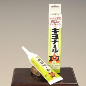 癒合剤:キヨナールエース 100g y-bonsai