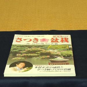 本:さつき盆栽 y-bonsai