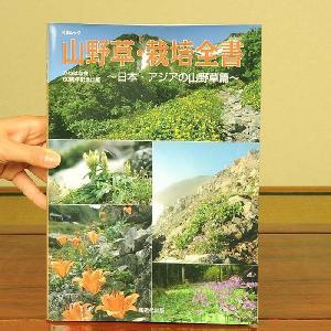 本:山野草・栽培全書〜日本・アジアの山野草篇〜 y-bonsai