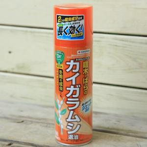 殺虫剤 カイガラムシ エアゾール 480ml y-bonsai