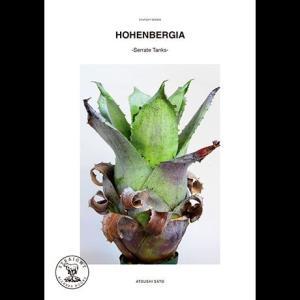 本:HOHENBERGIA -Serrate Tanks-|y-bonsai