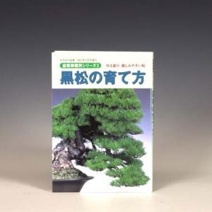 本:黒松の育て方 y-bonsai