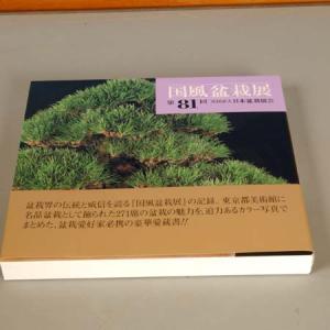写真集:国風盆栽展 第81回記念 y-bonsai