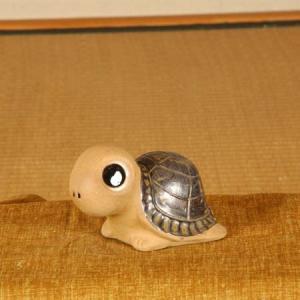 福かめ(ベージュ)|y-bonsai