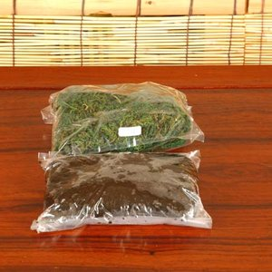 苔玉キット(モス)|y-bonsai