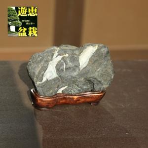 水石:天然石【現品】|y-bonsai