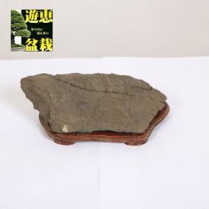 水石:天然石 老亀【現品】|y-bonsai