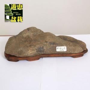 水石:宇治川石【現品】|y-bonsai