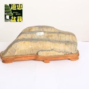 水石:虎石 【現品】|y-bonsai
