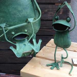 雑貨 メタルフロッグ(M/バンザイ・ぶらさがり)|y-bonsai