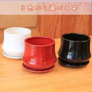 洋風モダン鉢:ムードラウンドB 15.5cm* y-bonsai