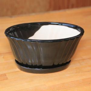 洋風モダン鉢:リニエントオーバル(受け皿付) 22.5cm* y-bonsai