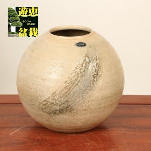 花瓶:信楽焼丸花瓶 6.5号|y-bonsai