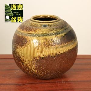 花瓶:信楽焼丸花瓶 8号|y-bonsai
