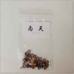 南天(なんてん) 種子|y-bonsai