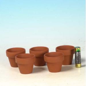 国産素焼き深鉢1.5号 5個セット y-bonsai