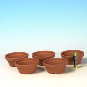 国産素焼き浅鉢2.5号 5個セット y-bonsai