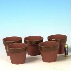 国産素焼き深鉢2.5号 5個セット y-bonsai