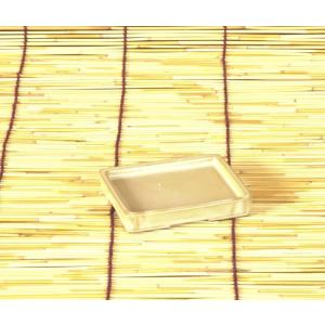 水盤 h0816|y-bonsai