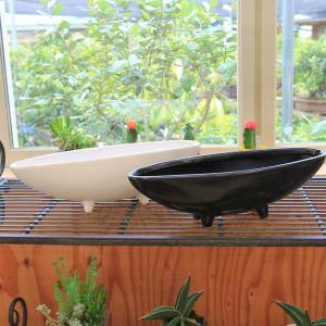 雑貨 洋風モダン鉢:舟型鉢 34.0cm|y-bonsai
