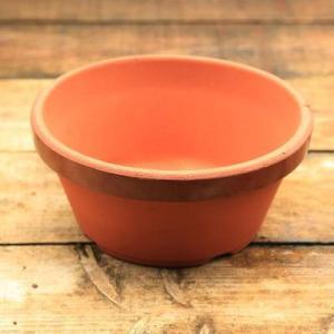 素焼き鉢 駄温浅鉢12号 y-bonsai