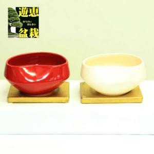 モダンあずき鉢(CB-409S) y-bonsai