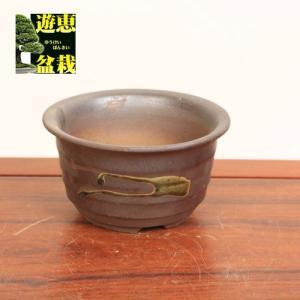 瀬戸焼丸鉢 16.3cm  y-bonsai
