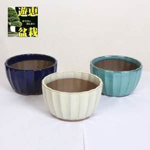 盆栽鉢:国産菊型鉢 大 4号 y-bonsai
