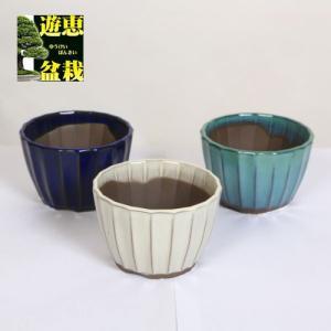 盆栽鉢:国産菊型鉢 小 3号 y-bonsai