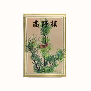 盆栽種子:高野槙|y-bonsai