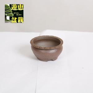 盆栽小鉢:丹波立杭焼 丹満 7.3cm【現】|y-bonsai