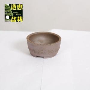盆栽小鉢:丹波立杭焼 丹満 7.9cm【現】|y-bonsai