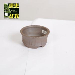 盆栽小鉢:丹波立杭焼 丹満 7.7cm【現】|y-bonsai