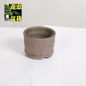盆栽小鉢:丹波立杭焼 丹満 7.5cm【現】|y-bonsai