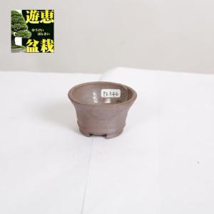 盆栽小鉢:丹波立杭焼 丹満 6.5cm【現】|y-bonsai