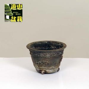 盆栽小鉢:丹波立杭焼 重一 8.3cm【現】|y-bonsai