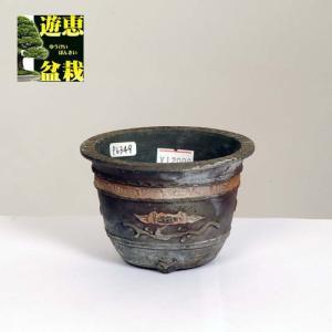 盆栽小鉢:丹波立杭焼 重一 9.8cm【現】|y-bonsai