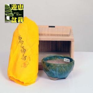 盆栽小鉢:初代 東福寺 丸鉢 8.5cm【現品】|y-bonsai