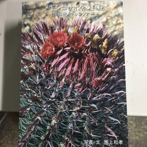 本:メキシコサボテン日記〜狂仙会メキシコツアー〜|y-bonsai