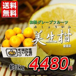 和製グレープフルーツ!晩柑の王様『美生柑(みしょうかん)』3kg 発送時期:4月上旬〜6月上旬