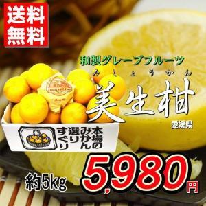和製グレープフルーツ!晩柑の王様『美生柑(みしょうかん)』5kg 発送時期:4月上旬〜6月上旬