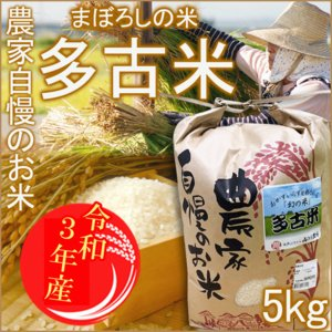 新米 多古米 たこまい 5kg 米 白米 まぼろしの米 千葉県 ギフト 希少なブランド米 コシヒカリ...