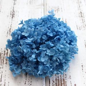 岩手県にある「みちのくあじさい園」で生産されている人気ブランドです。 発色の良さや、保湿感に優れた高...