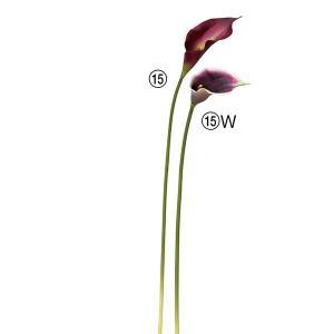 《 造花 》◆とりよせ品◆Asca(アスカ) カラーリリィの画像