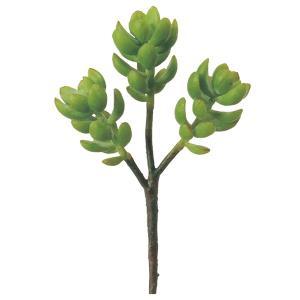 《 造花 グリーン 多肉植物 》Asca/アスカ サッカレンテン|y-hanabishi