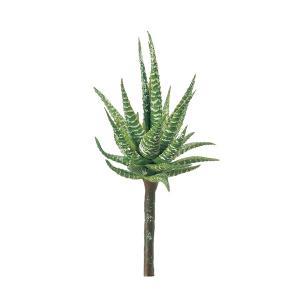 《 造花 グリーン 多肉植物 》Asca/アスカ ハワーティア グリーン|y-hanabishi